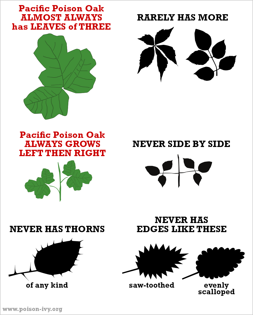 Pacific poison oak always-never chart