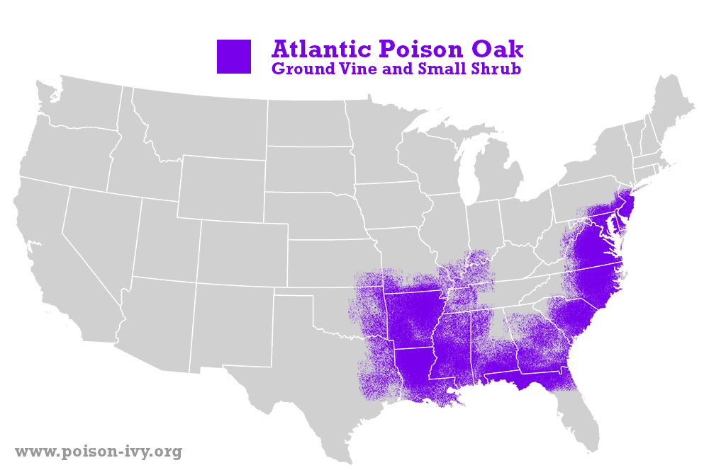 Atlantic poison oak map