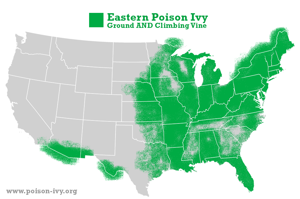 eastern poison ivy map