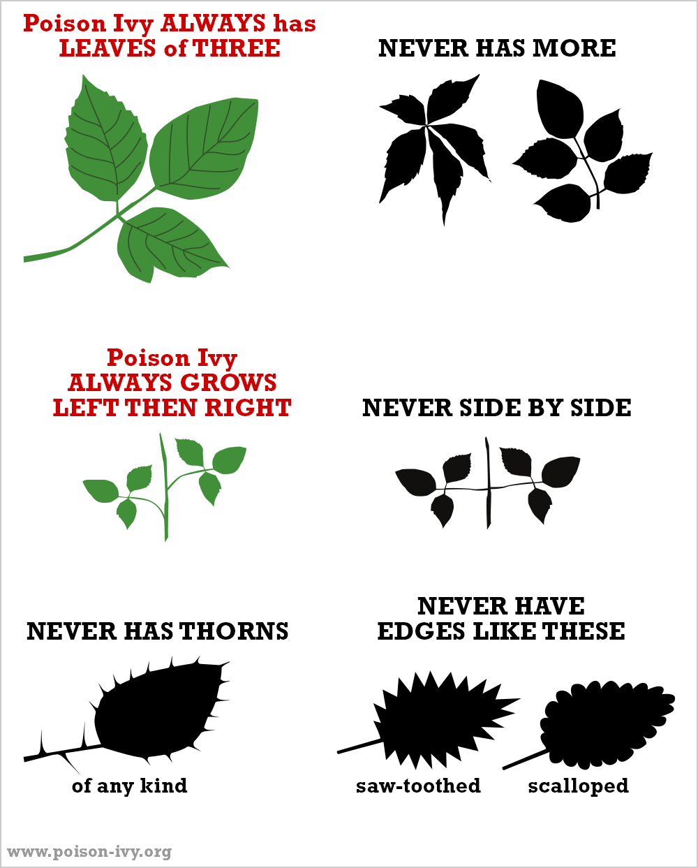 poison ivy always never chart