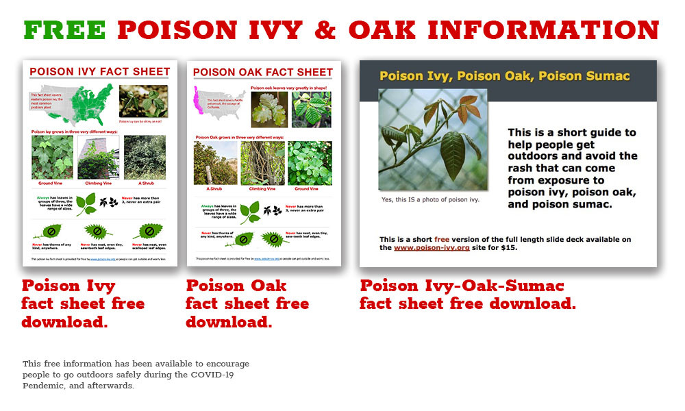 free information downloads