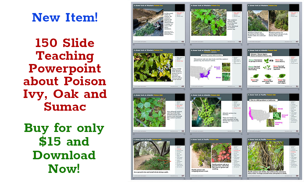 Downloadable Powerpoint