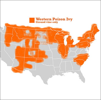 Western Poison Ivy Info Map